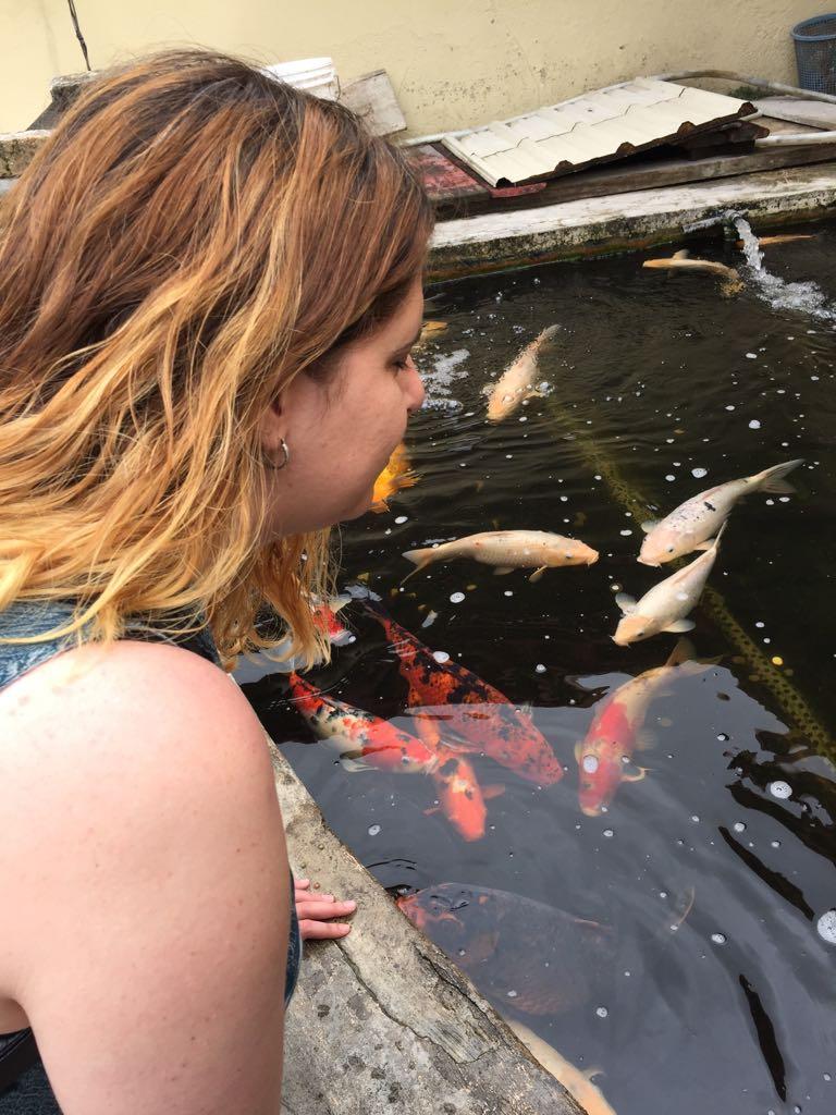 Laura mirando un estanque de peces del templo y los grandes peces de colores le devuelven la mirada